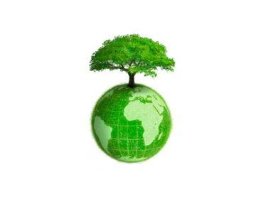 Lanxmeer : premier quartier géré en permaculture !
