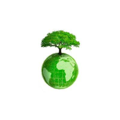 Recyclage créatif : les arbres de Noël les plus inventifs !