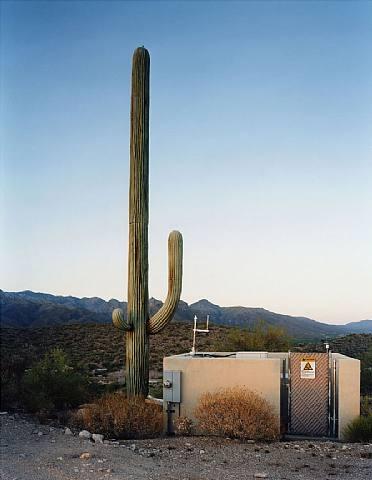 Antennes téléphoniques camouflées - Robert Voit
