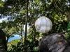 Cocoon tree, la cabane dans l'arbre revisitée