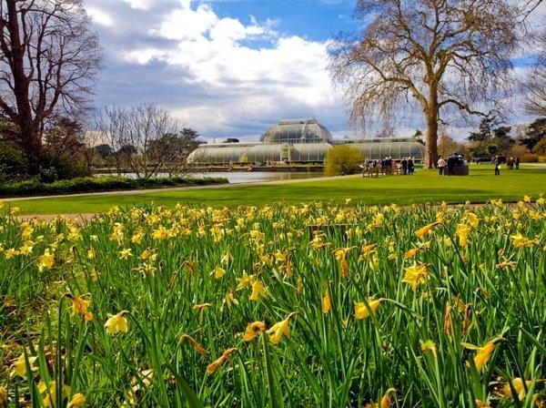 Le Kew Garden à Londres