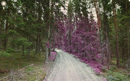 La nature insolite de Google Street View vu par Jon Rafman