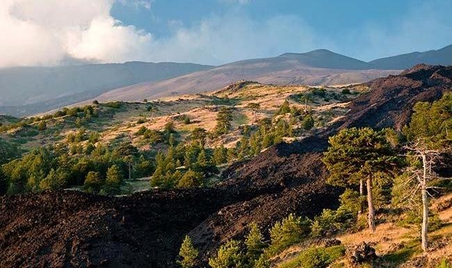 Parc naturel de l'Etna