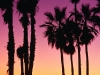 Venice Beach en Californie