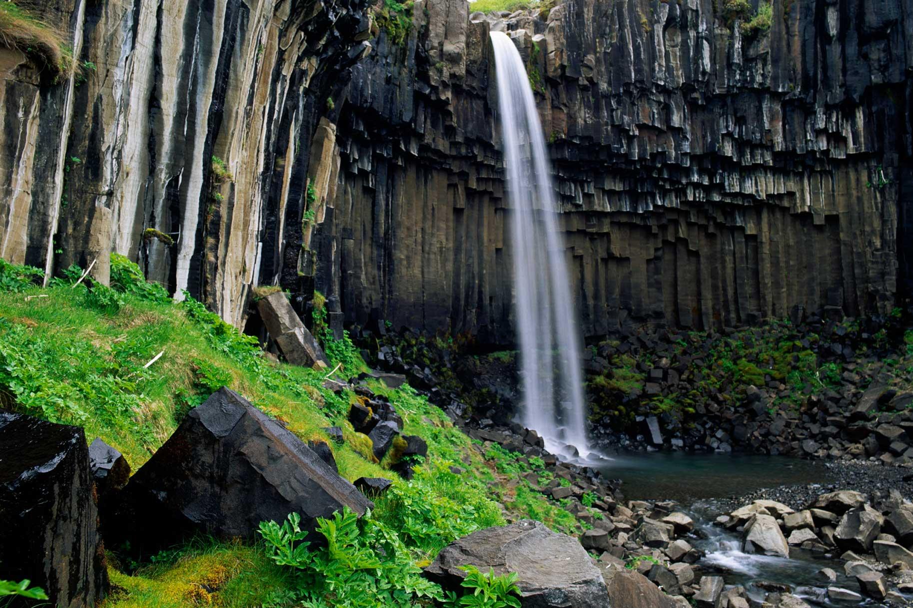 Chutes de Svartifoss (Islande)