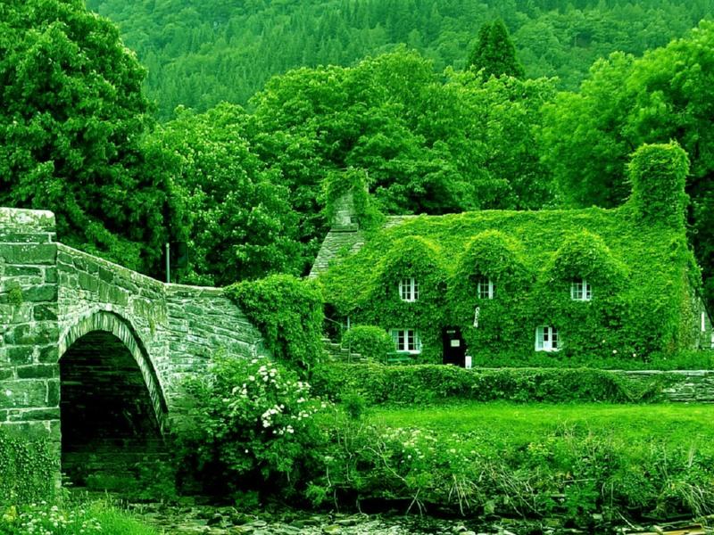 ici e n'est pas seulement le toit qui est vert