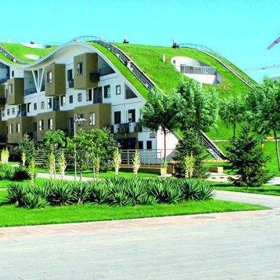 Des toits v g taux pour tous les go ts - Maison sur toit ...