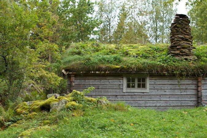 une petite cabane dans le bois