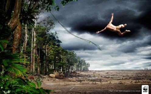Campagne WWF - La déforestation