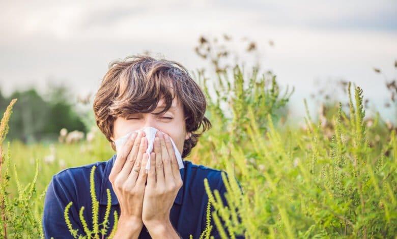 Des aliments anti-allergies !