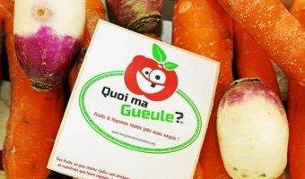 Les Gueules cassées : des fruits et légumes moins jolis, moins cher, mais exquis !