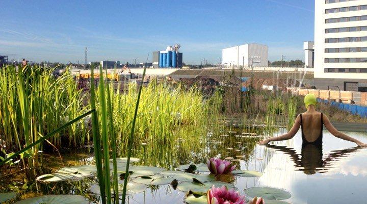 Une piscine écologique à ciel ouvert en plein cœur de Londres