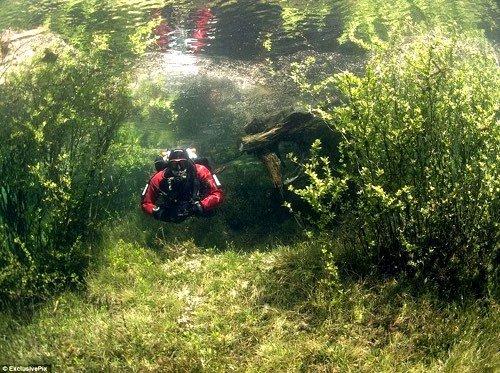 Le Grüner See, un lac qui a la particularité d'être...éphémère