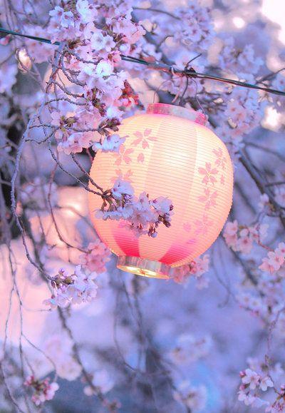 lumiere japonais