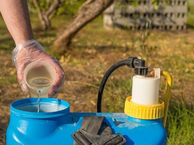 Agriculture : huile de colza pour le désherbage naturel