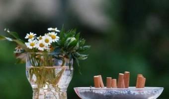 12 astuces pour se débarrasser des odeurs de tabac naturellement !