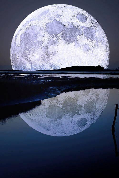 Bonsoir lune !