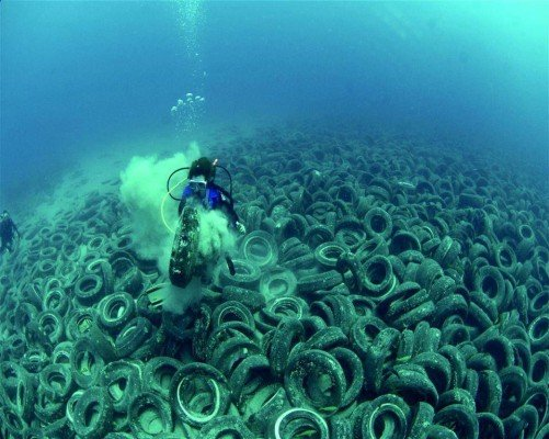 Old car tires dumped on the ocean floor off Fort Lauderdale !