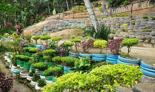 Sitiê : une décharge sauvage transformée en parc écologique