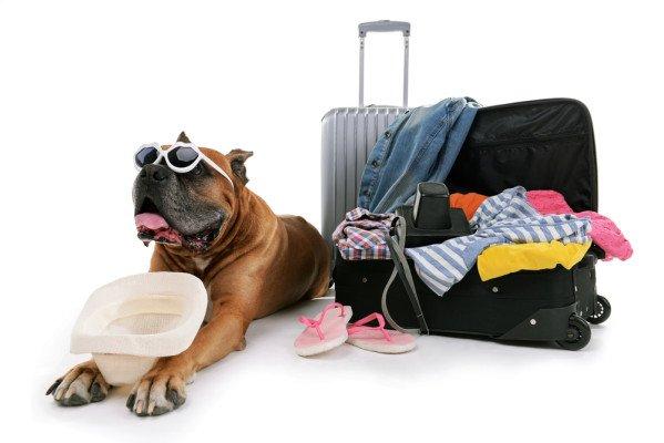 Les 4 produits indispensables dans la valise !