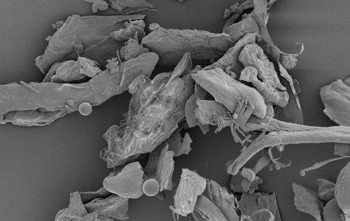 Pollution intérieure : que se cache-t-il dans la poussière de nos maisons ?