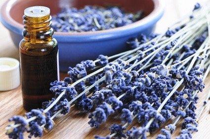 12 choses à savoir avant d'utiliser les huiles essentielles