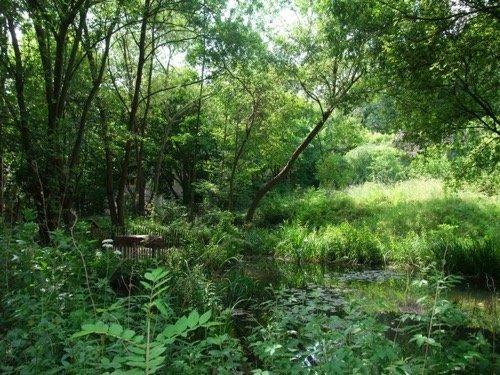 Trois adresses de jardins parisiens insolites for Le jardin naturel lespinasse
