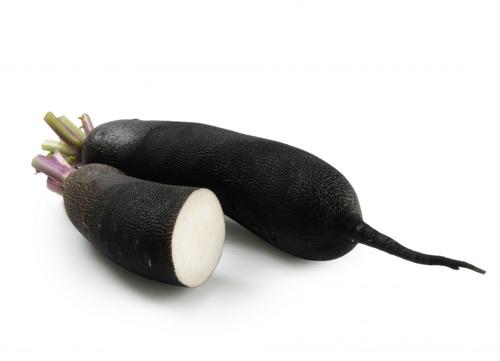 Crise de foie naus es vomissements rem des et - Cuisiner le radis noir cru ...