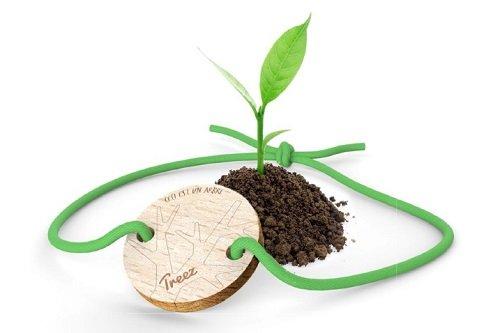 Treez : en offrant un bijou, vous plantez un arbre !