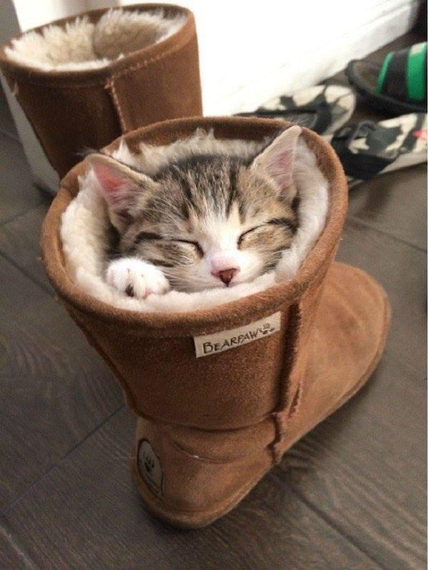 J'ai froid, puis-je me réchauffer dans tes bottes ?
