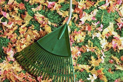 Jardinage 18 travaux d 39 entretien du jardin en automne for Travaux entretien jardin