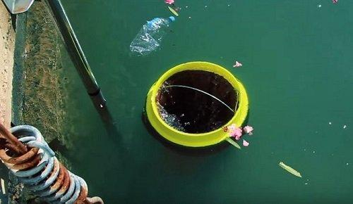 La « poubelle des mers », elle avale les déchets des océans