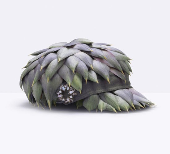 fruit-hat