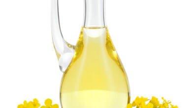 Photo of Agriculture : huile de colza pour le désherbage naturel