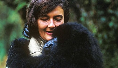 solomon_w_jagwe_galiwango_film_conservation_dian_fossey_birthday_feature_01