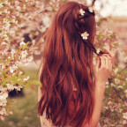 Soins pour les cheveux à base de romarin