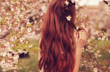 Pousse cheveux romarin