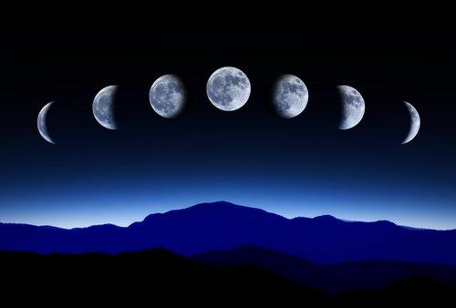 Cultiver avec la lune, comment les phases lunaires influencent l'agriculture