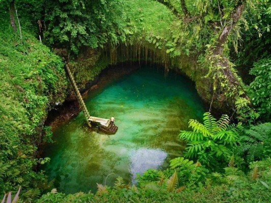 Un vrai paradis terrestre !