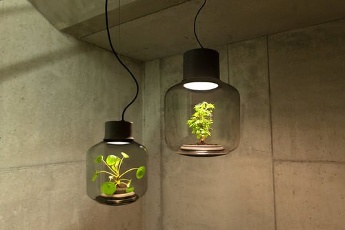 mygdal-plant-lamps-for-windowless-spaces-we-love-eames-6-1