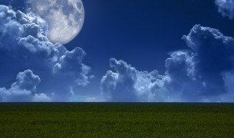 Jardiner avec la lune : conseils pratiques et explications