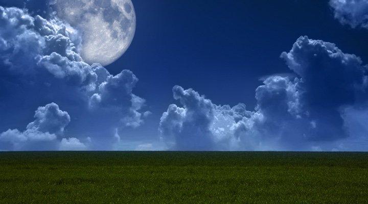 Jardiner avec la lune : conseils et explications
