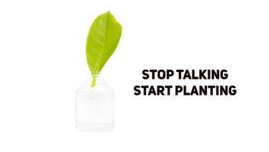 Photo of Des arbres pour la planète : un enfant de 9 ans en plante 14 milliards !