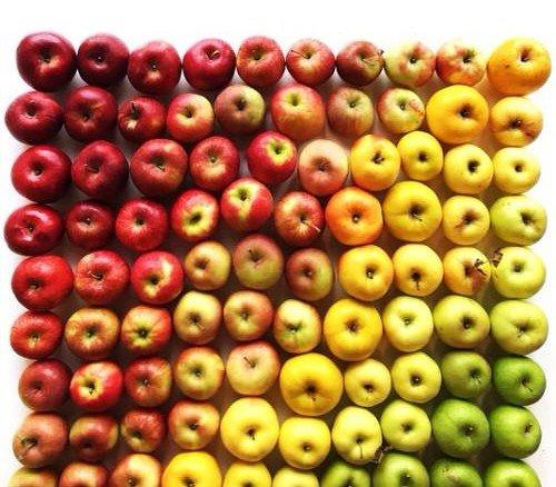 colorful-food-arrangement-photography-foodgradients-brit_009-1