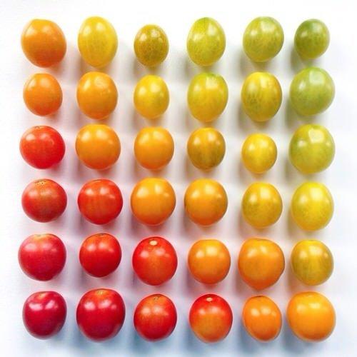 colorful-food-arrangement-photography-foodgradients-brit_011-1