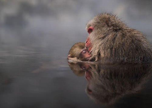 national-geographic-travel-photographer-of-the-year-cont_004