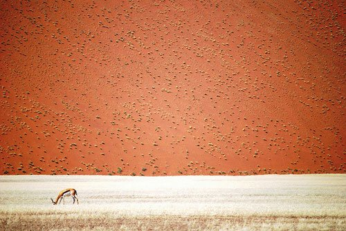 national-geographic-travel-photographer-of-the-year-cont_015