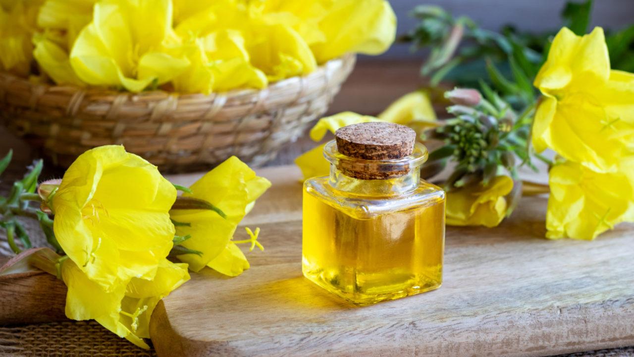 L'huile d'onagre et ses multiples bienfaits