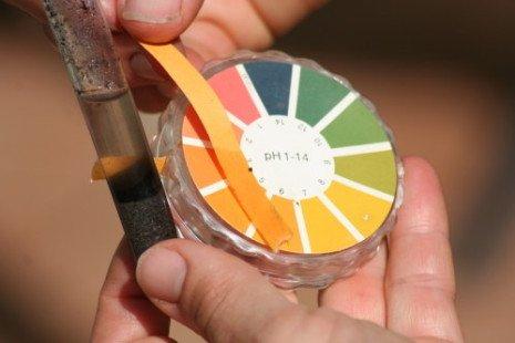 Mesurer le pH du sol