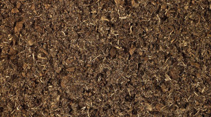 jardinage comment mesurer le ph du sol de fa on naturelle toutvert. Black Bedroom Furniture Sets. Home Design Ideas